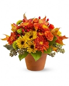 Pumpkin Spice Fresh Flower Arrangement