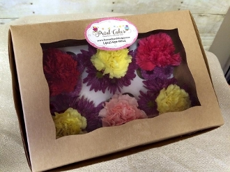"""PetalCakes"" - A Gift of Six Assorted Colors"