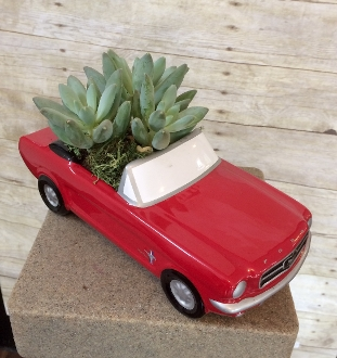 """Hit The Highway"" Keepsake Planter"